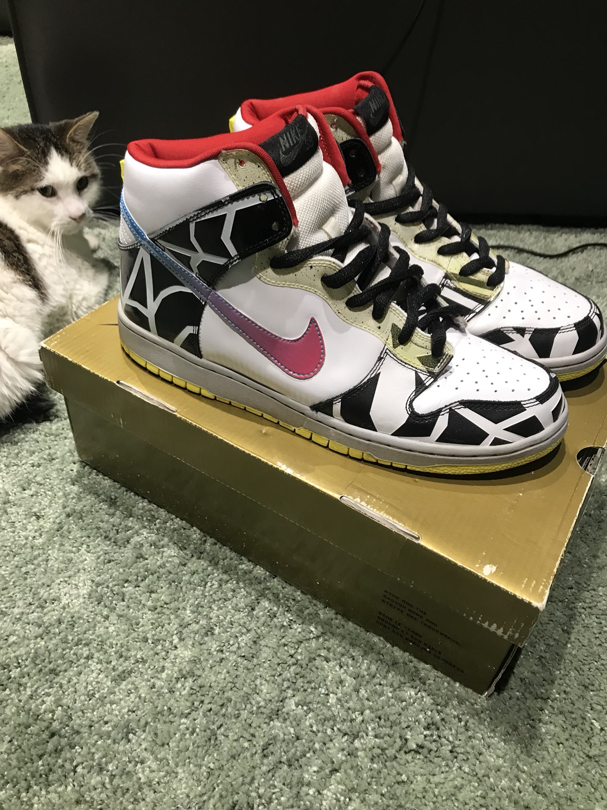 sports shoes 9d9bd 96da2 Nike SB Dunk High Thrashin