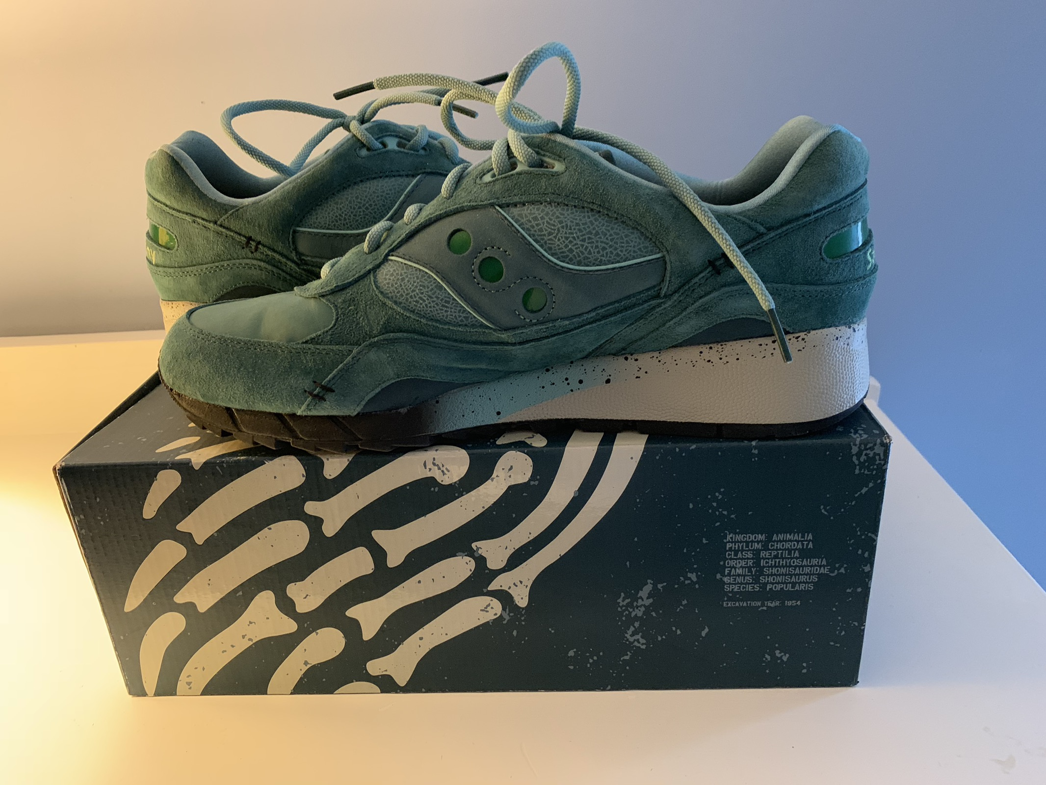"size 40 1aab4 83ca7 Shadow 6000 X Feature Sneaker Boutique ""Living Fossil"""